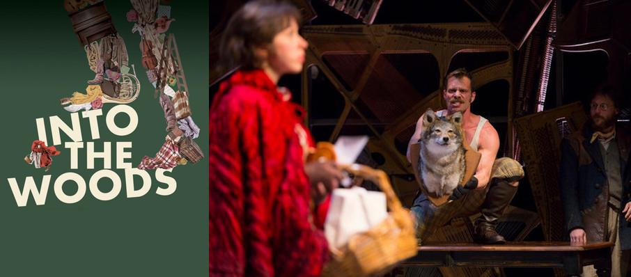 Into the Woods at Laura Pels Theater