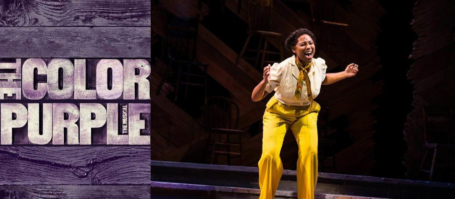 The Color Purple at Paper Mill Playhouse