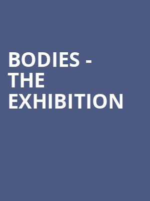 Bodies - The Exhibition at Gallery MC