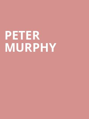 Peter%20Murphy at Webster Hall