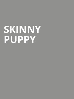 Skinny Puppy at Webster Hall