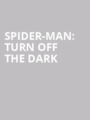Spider-Man:%20Turn%20Off%20the%20Dark at Foxwoods Theater