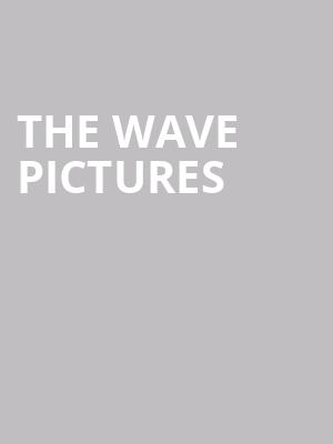 The Wave Pictures at Concert Hall At Suny Purchase