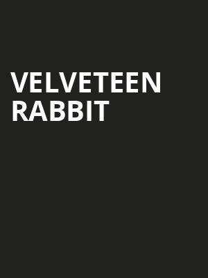 Velveteen%20Rabbit at Drilling Company Theatre