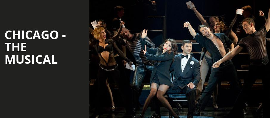 Chicago The Musical, Ambassador Theater, New York