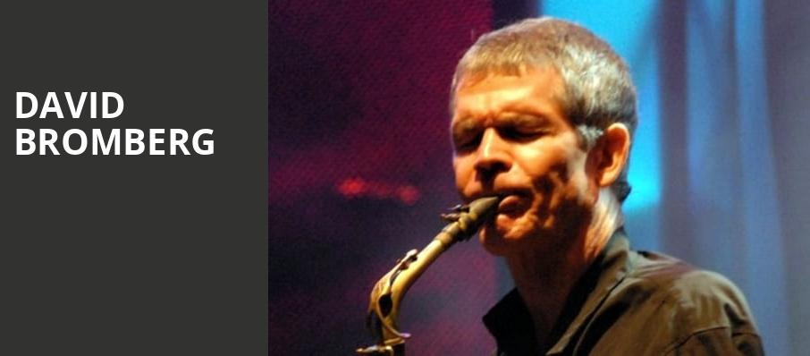 David Bromberg, Town Hall Theater, New York