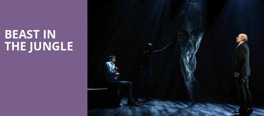 Beast in the Jungle, Vineyard Theater, New York