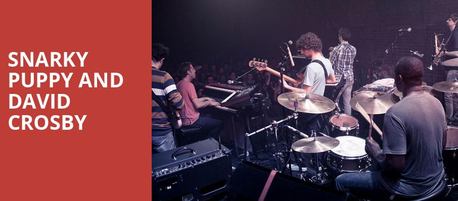 Snarky Puppy and David Crosby, Isaac Stern Auditorium, New York