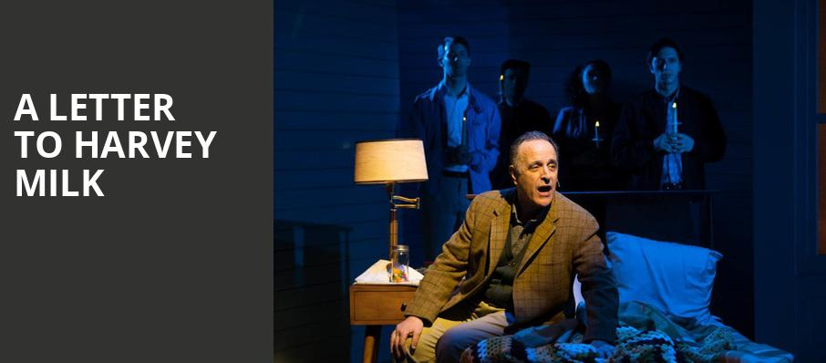 A Letter to Harvey Milk, Acorn Theatre, New York