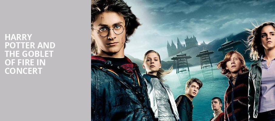Harry Potter and the Goblet of Fire in Concert - Prudential Hall
