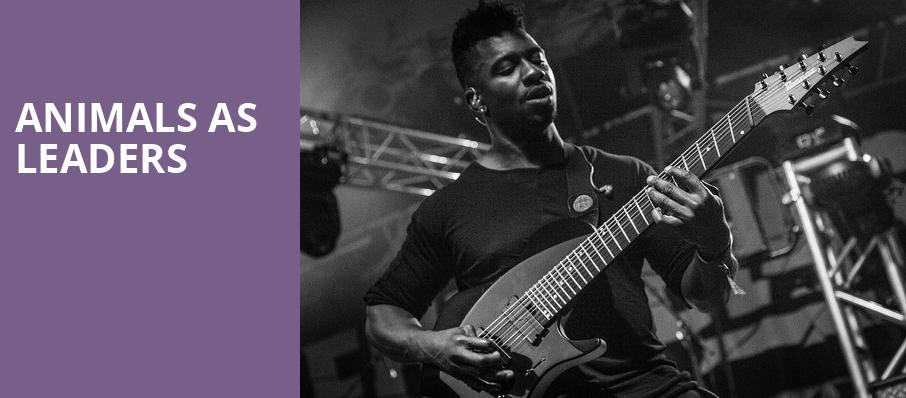 Animals As Leaders, Irving Plaza, New York