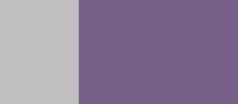 The Mighty Mighty Bosstones, Webster Hall, New York