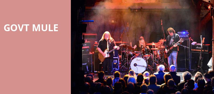 Govt Mule, Beacon Theater, New York