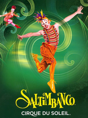 Cirque du Soleil - Saltimbanco at Walkerspace Theater
