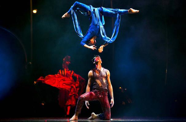 Cirque du Soleil: Dralion – Variety