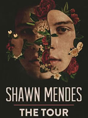 Shawn Mendes at Prudential Center