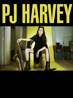 PJ Harvey at Rumsey Playfield SummerStage Central Park